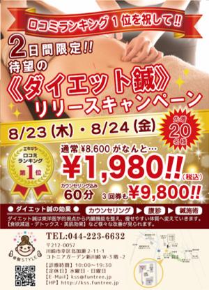 《ダイエット鍼》 リリースキャンペーン!!(骨盤STYLE 新川崎店)