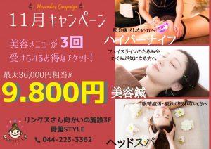 11月キャンペーン~美容メニューお得な情報~(骨盤STYLE 新川崎店)